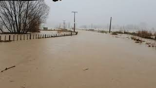 Road Becomes Flowing River in Tolaga Bay Floods