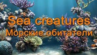 Морские животные на английском языке.  English Vocabulary - Sea creatures
