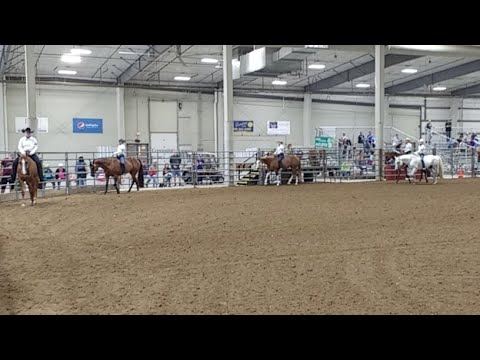 2017 Lancaster County Super Fair - 4-H Western Horse 3 (already in progress)