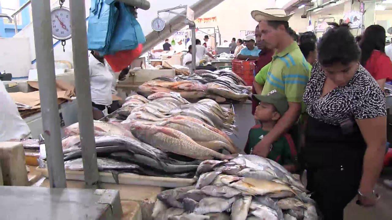 Panama city fish market youtube for Fish market panama city beach