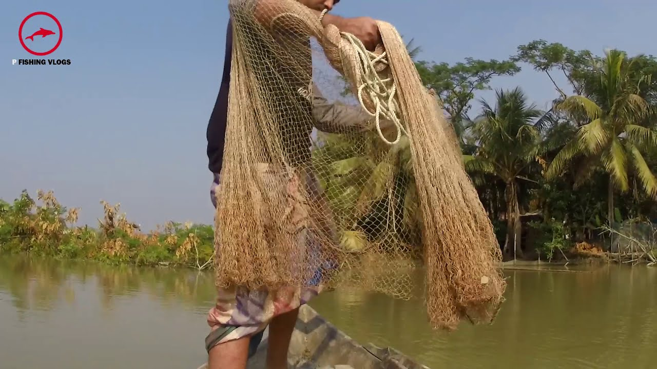 Village net fishing Videos | Boat net fishing videos