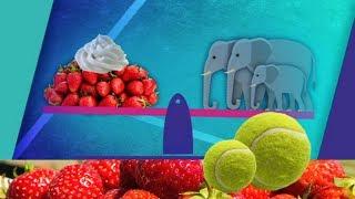 Ffeil: Wimbledon Mewn Rhifau