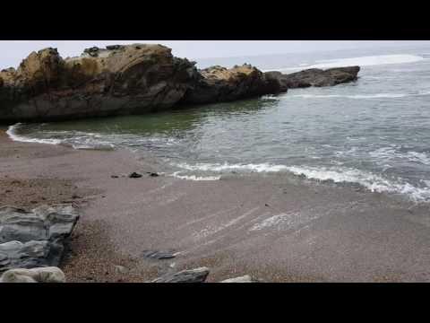 Bean Hollow State Beach, Pebble Beach