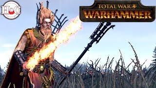 Burn out the Wolves? - Total War Warhammer Online Battle 365