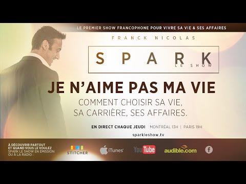 Comment aimer sa vie & sa carrière - SPARK LE SHOW par Franck Nicolas