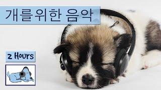 음악을 휴식하는 강아지의 분리 불안을 치료합니다.