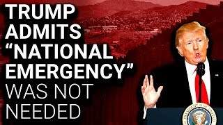 The Real National Emergency is Donald Trump