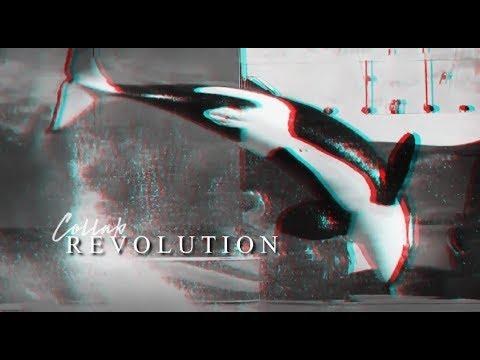 REVOLUTION • Collab