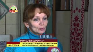 видео Краеведческий музей г. Покров