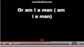 am i man or muppet official lyrics