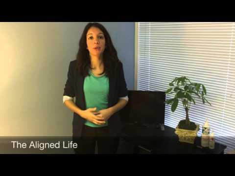 Welcome to Align Chiropractic & Wellness