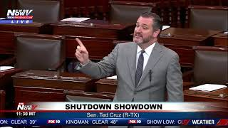 MUST WATCH: Ted Cruz GOES Off On Democrats For Not Paying Coast Guard During Shutdown