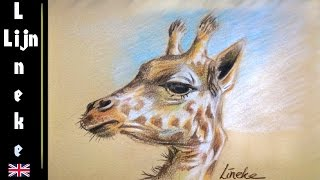 Drawing a GIRAFFE with Pastel Pencils on colored paper - easy