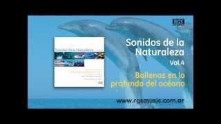 Sonidos de la Naturaleza Vol.4 - Ballenas en lo profundo del oceano