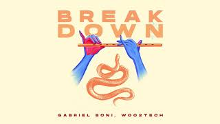 Baixar Gabriel Boni, Woo2Tech - Break Down (Radio Mix)