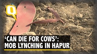 'Can die to save cows': Hapur Lynching Expose Communal Fault Lines | The Quint