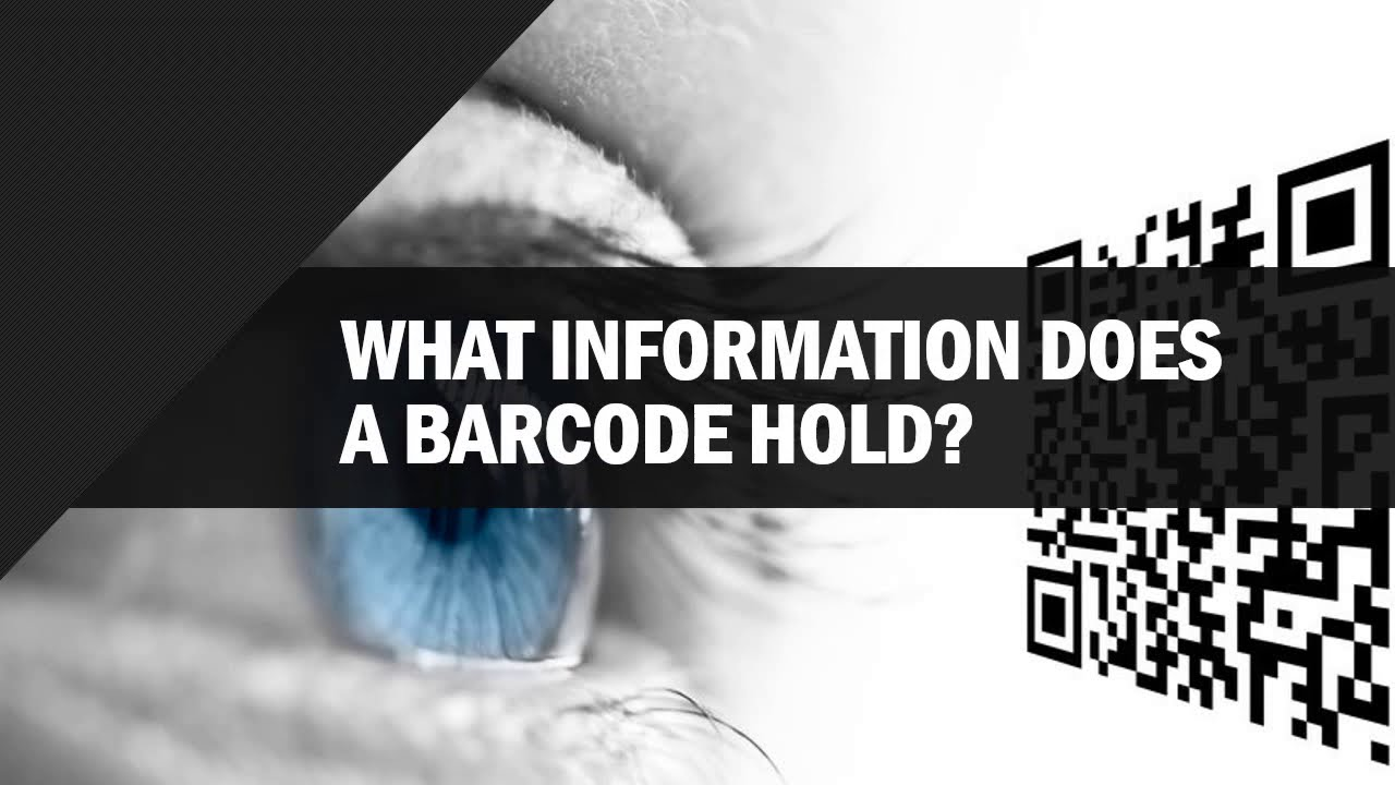 What Information Does a BarCode Hold? - ByteScout