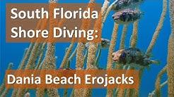 South Florida Shore Diving: Dania Beach Erojacks