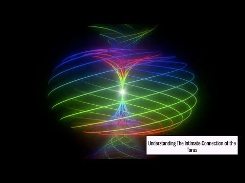 Understanding the Intimate Connection of the Torus
