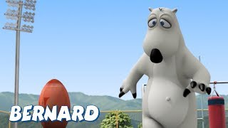 Bernard Bear | Rugby AND MORE | Cartoons for Children