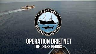 Operation Driftnet: The Chase Begins
