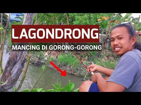 LAGONDRONG MANCING DI GORONG-GORONG - YouTube
