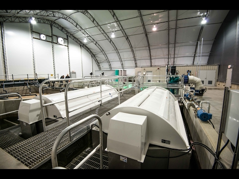 Marine Harvest Canada Dalrymple Hatchery Industry Spotlight - Pentair AES