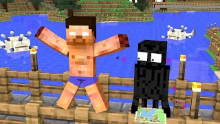 Monster School : Search for treasure on the island - funny minecraft animation
