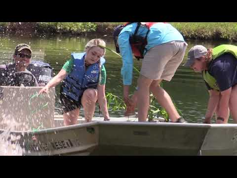 Building A Floating Living Fish Attractor