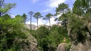 Potapeni Korsika 2011(The video was made on the diving holiday on Korsika island. Video bylo natočeno na potápěčské dovolené na ostrově Korsika., 2011-08-08T20:02:23.000Z)