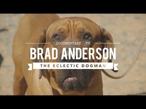 BRAD ANDERSON: THE WORLD'S MOST ECLECTIC DOG MAN