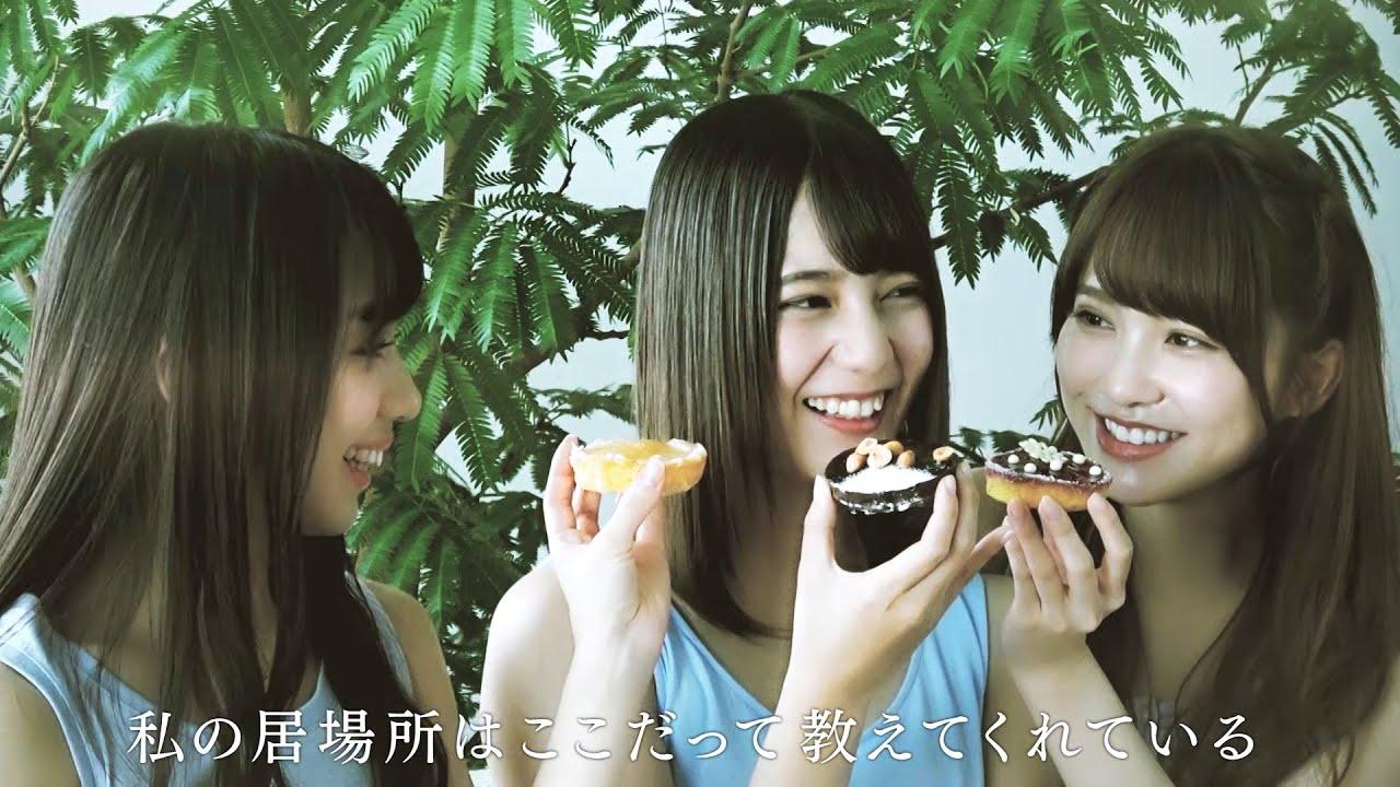 46 ライブ 向坂 dvd 日