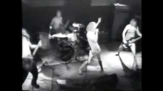 Squatweiler - Jack Ball live