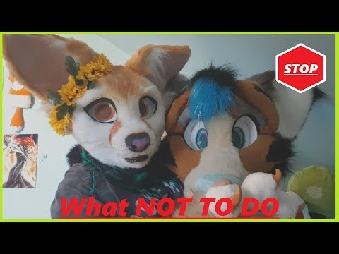 | WHAT NOT TO DO TO FURSUITERS |