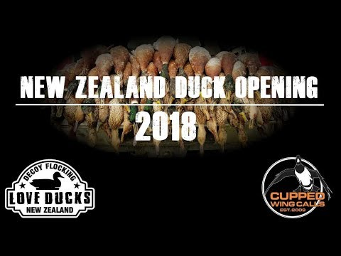 Duck Hunting Opening NZ 2018