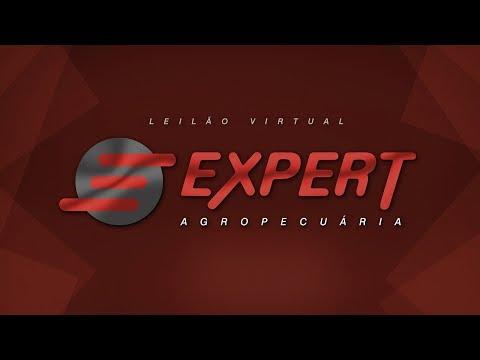 Lote 10   Folgado EXPERT   EXPT 154 Copy