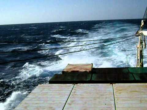 View from Ogasawara-maru