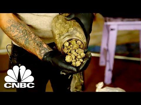Black Market Marijuana: Big Business Of The Illegal Marijuana Industry | American Vice | CNBC Prime