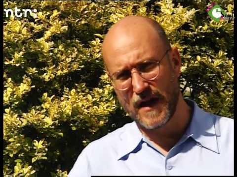 Interview John Scofield @ NSJ 1999