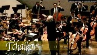Vals de la serenata para cuerdas en do mayor Op. 48 / P. Tchaikovsky