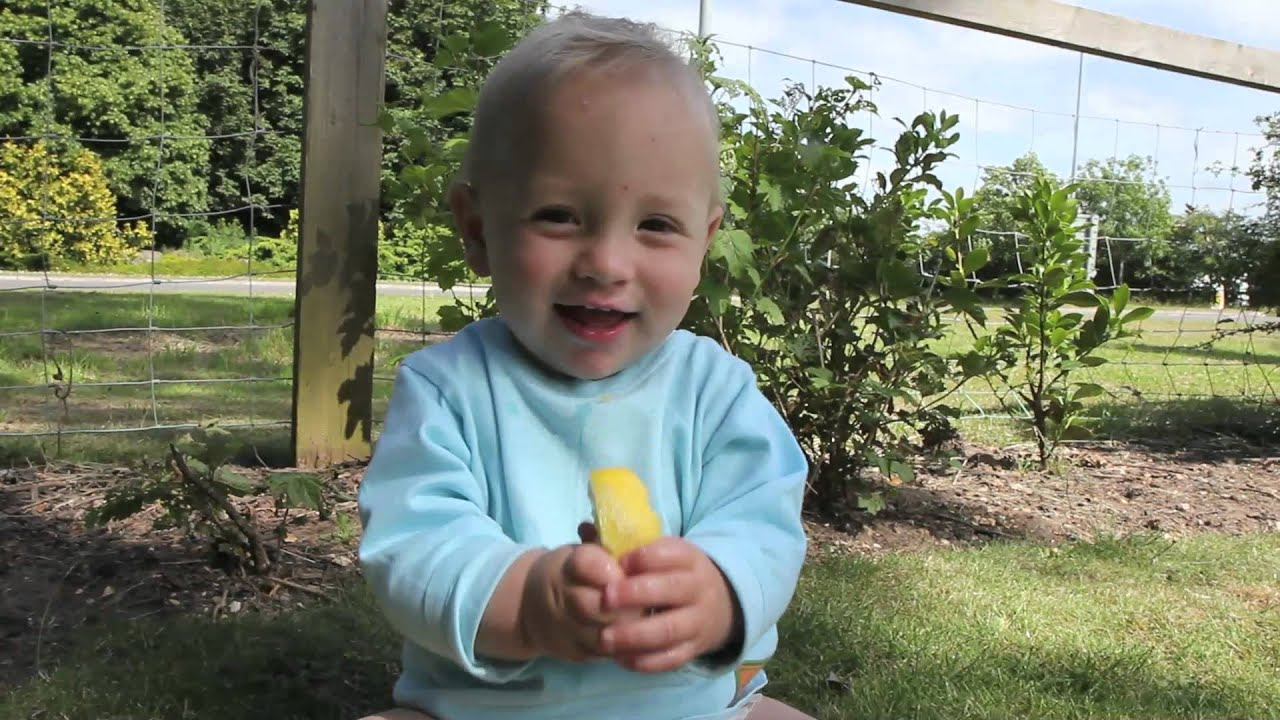 Baby Sucks A Lemon For The First Time Youtube