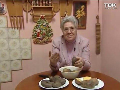 Как выбирать семена картофеля для посадки?