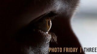 Photo Friday Three   Eye Macro