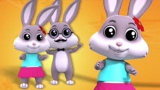 кролик палец семья | Рифмы для детей | Дошкольная песня | 3D Nursery Rhymes | Rabbit Finger Family