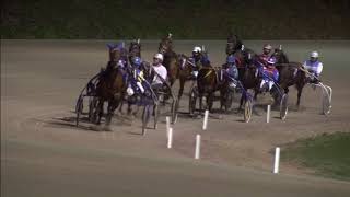 Vidéo de la course PMU PRIX VAN DEN AKKER JEANS