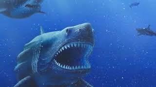 Самая большая акула в мире   Мегалодон!
