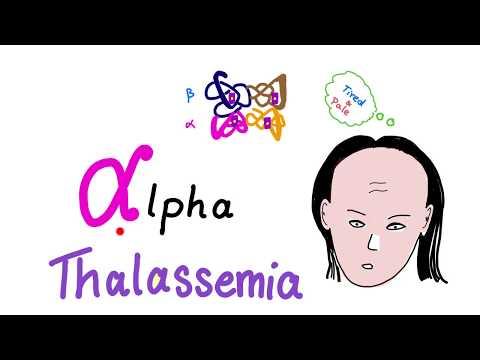 Alpha Thalassemia