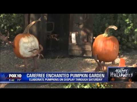 Fox 10 News Cory Mccloskey Visits Enchanted Pumpkin Garden With Renowned Sculptor Ray