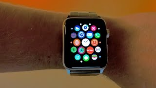 Apple Watch Series 3: 8 Month Review