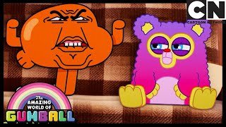 Darwin VS Fuzzy: The Fight For Gumball's BFF | Gumball | Cartoon Network